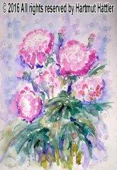 0031_Blumen.jpg