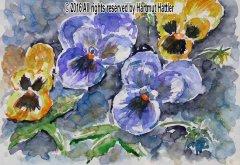 0032_Blumen.jpg