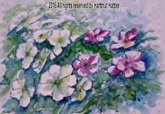 0037_Blumen.jpg
