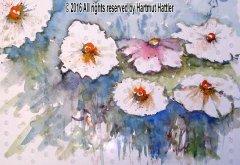 0039_Blumen.jpg