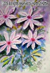 0068_Blumen.jpg