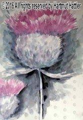 0071_Blumen.jpg